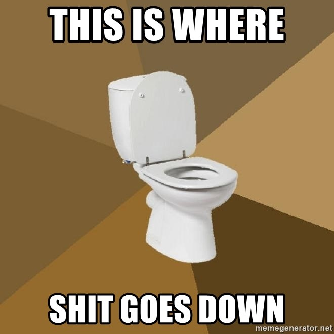 talking toilet - this is where  shit goes down
