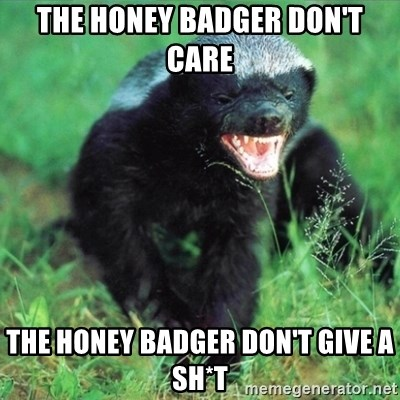 Honey Badger Actual - THE HONEY BADGER DON'T CARE  THE HONEY BADGER DON'T GIVE A SH*T