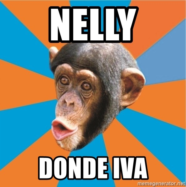Stupid Monkey - NELLY DONDE IVA