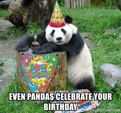 Happy Birthday Panda -  Even pandas celebrate your birthday