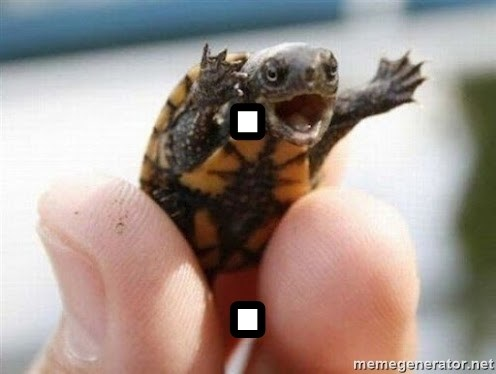 angry turtle - . .
