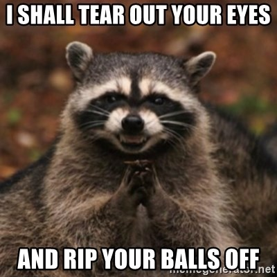 evil raccoon - I SHALL TEAR OUT YOUR EYES AND RIP YOUR BALLS OFF