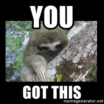 Creepy Sloth - you got this