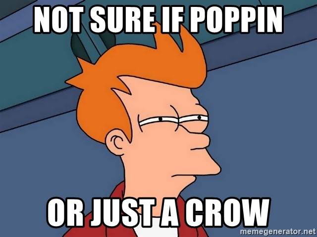 Futurama Fry - Not sure if poppin Or Just a crow