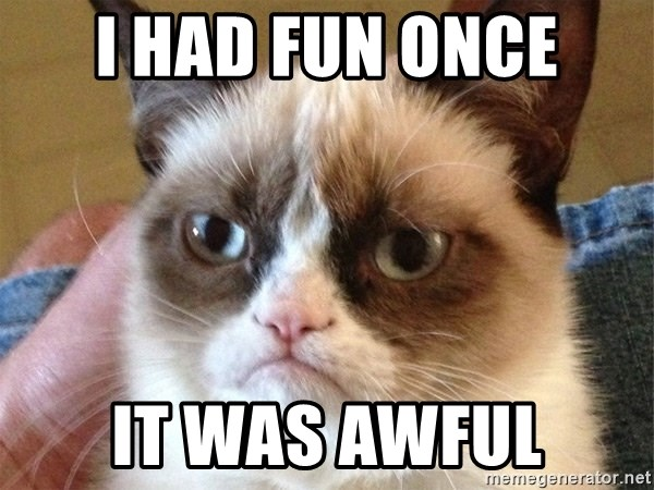 Angry Cat Meme - I HAD FUN ONCE IT WAS AWFUL