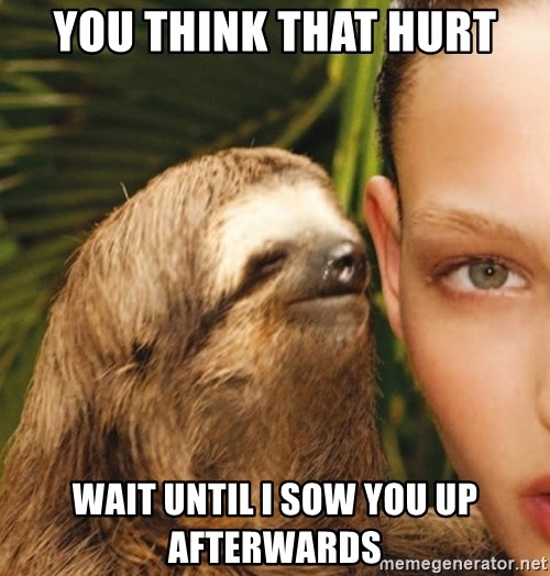 The Rape Sloth - You think that hurt Wait until I sow you up Afterwards