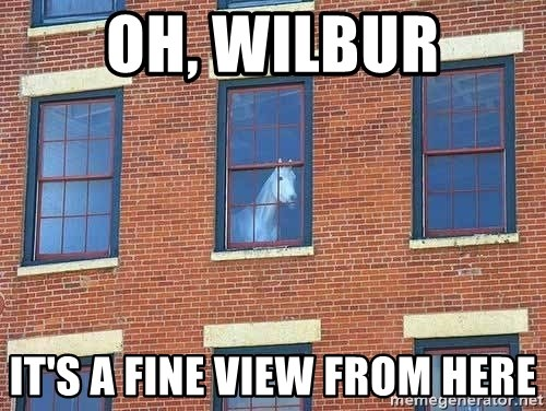 window horse - oh, wilbur it's a fine view from here
