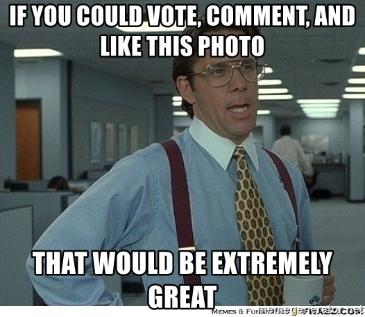 That would be great - If you could vote, comment, and like this photo That would be extremely greAt