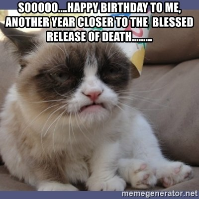 Birthday Grumpy Cat - sooooo....happy birthday to me, another year closer to the  blessed release of death.........