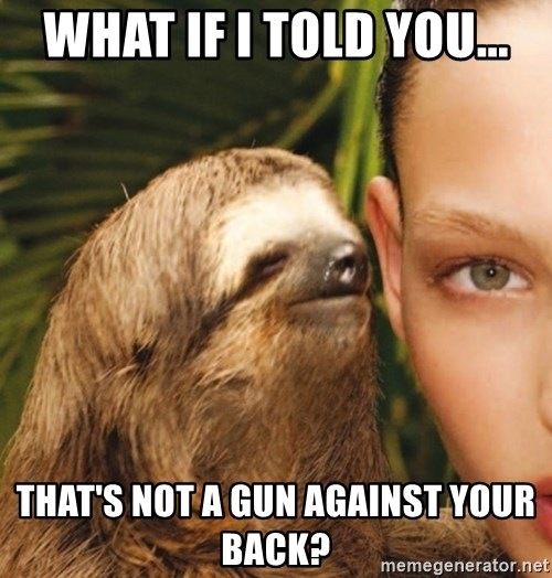 The Rape Sloth - What if I told you... that's not a gun Against your back?