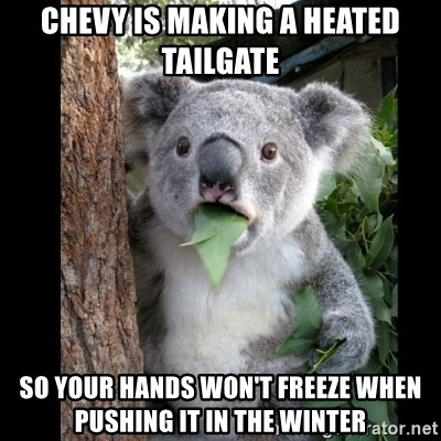 Koala can't believe it - ChevY is making a heated tailgate So your hands won't freeze when pushing it in the winter