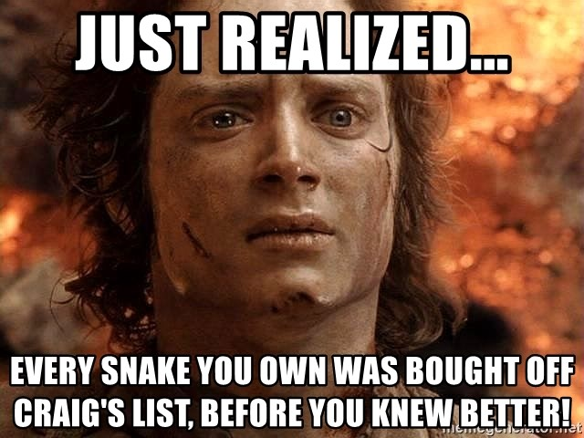Frodo  - Just realized... every snake you own was bought off craig's list, before you knew better!