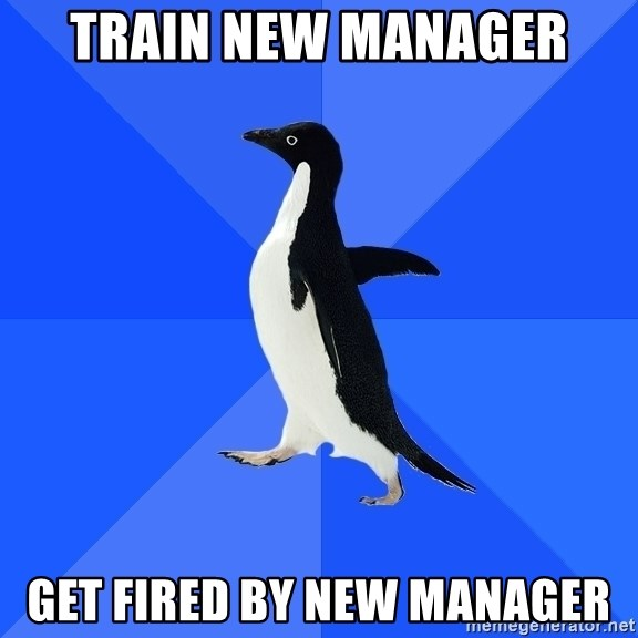 Socially Awkward Penguin - train new manager get fired by new manager
