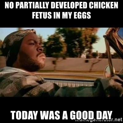 Ice Cube- Today was a Good day - No Partially developed chicken fetus in my eggs Today was a good day