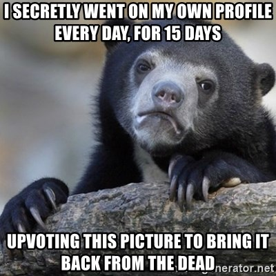 Confession Bear - I secretly went on my own profile every day, for 15 days upvoting this picture to bring it back from the dead