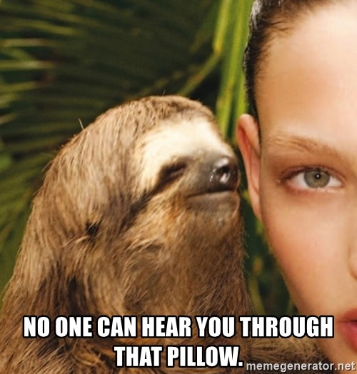 The Rape Sloth -  No one can hear you through that pillow.