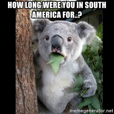 Koala can't believe it - how long were you in south america for..?