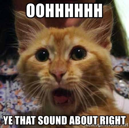 Crazy cat - OOHHHHHH  YE THAT SOUND ABOUT RIGHT