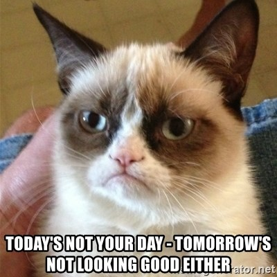 Grumpy Cat  -  TODAY'S NOT YOUR DAY - TOMORROW'S NOT LOOKING GOOD EITHER