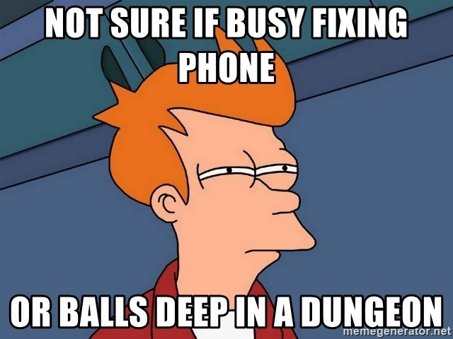 Futurama Fry - Not sure if busy fixing phone or balls deep in a dungeon