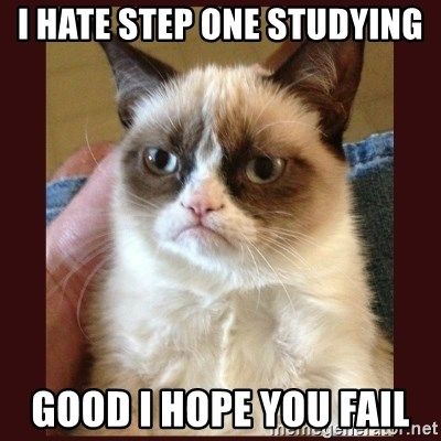 Tard the Grumpy Cat - I hate step one studying Good I hope you fail