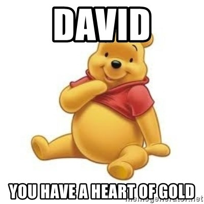 Winnie the Pooh - David You have a heart of gold