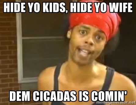 Hide Yo Kids - Hide yo Kids, Hide YO wife DEM cicadas is comin'