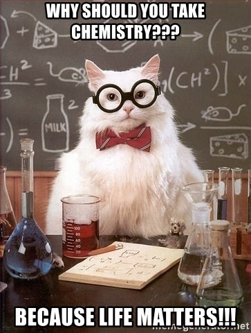 Chemistry Cat - why should you take chemistry??? because life matters!!!