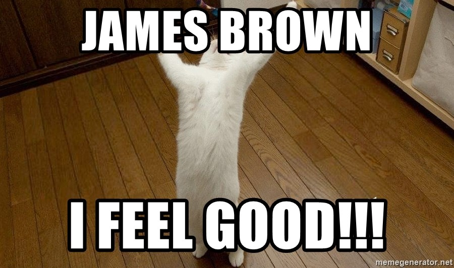 praise the lord cat - james brown I feel good!!!