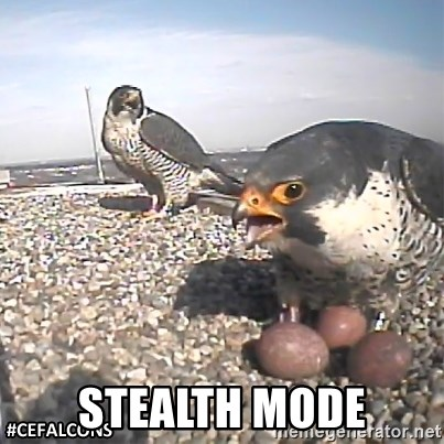 #CEFalcons -  STEALTH MODE