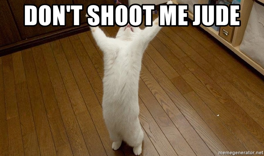 praise the lord cat - DON'T SHOOT ME JUDE
