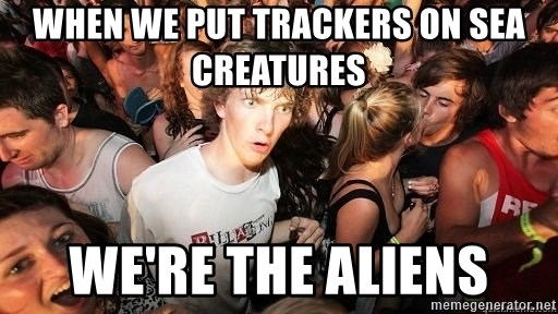 Sudden Realization Ralph - when we put TRACKERS on sea creatures we're the aliens