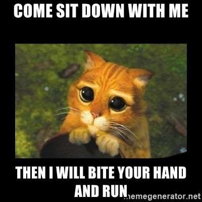 gato con botas - COME SIT DOWN WITH ME THEN I WILL BITE YOUR HAND AND RUN