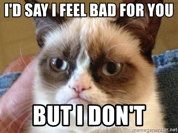Angry Cat Meme - I'd say i feel bad for you but i don't