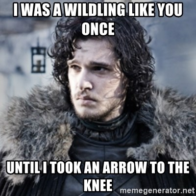 38546379 i was a wildling like you once until i took an arrow to the knee