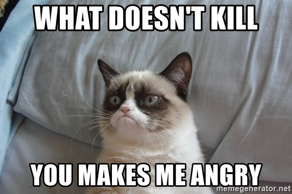 Grumpy cat good - WHAT DOESN'T KILL YOU MAKES ME ANGRY