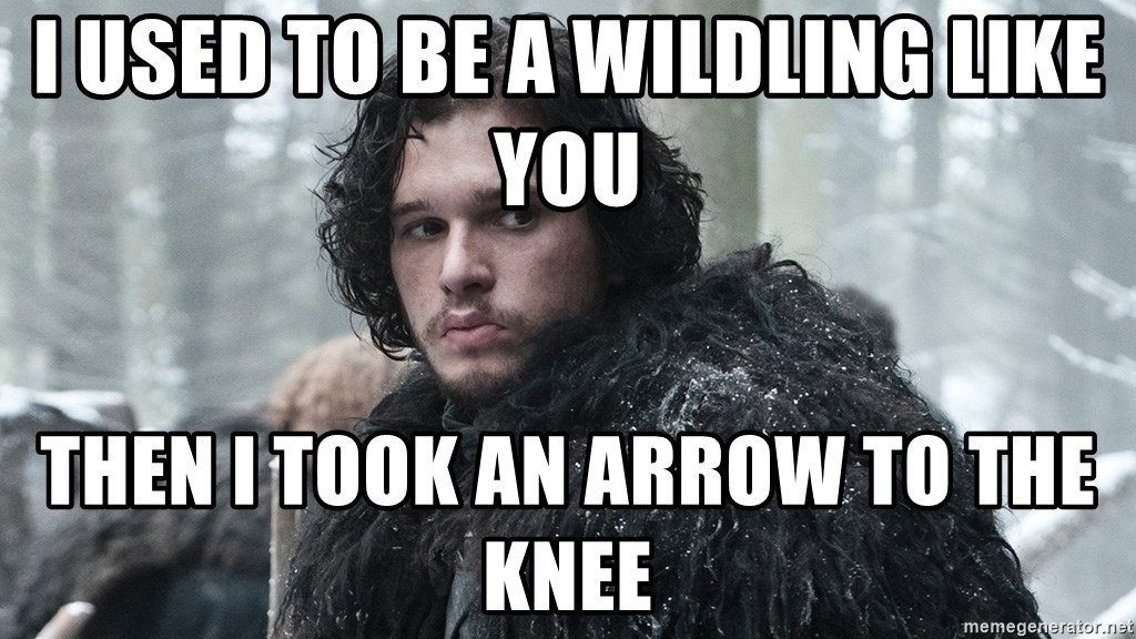 i used to be a wildling like you then i took an arrow to the knee i used to be a wildling like you then i took an arrow to the knee