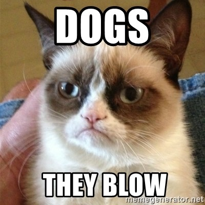 Grumpy Cat  - Dogs  They Blow