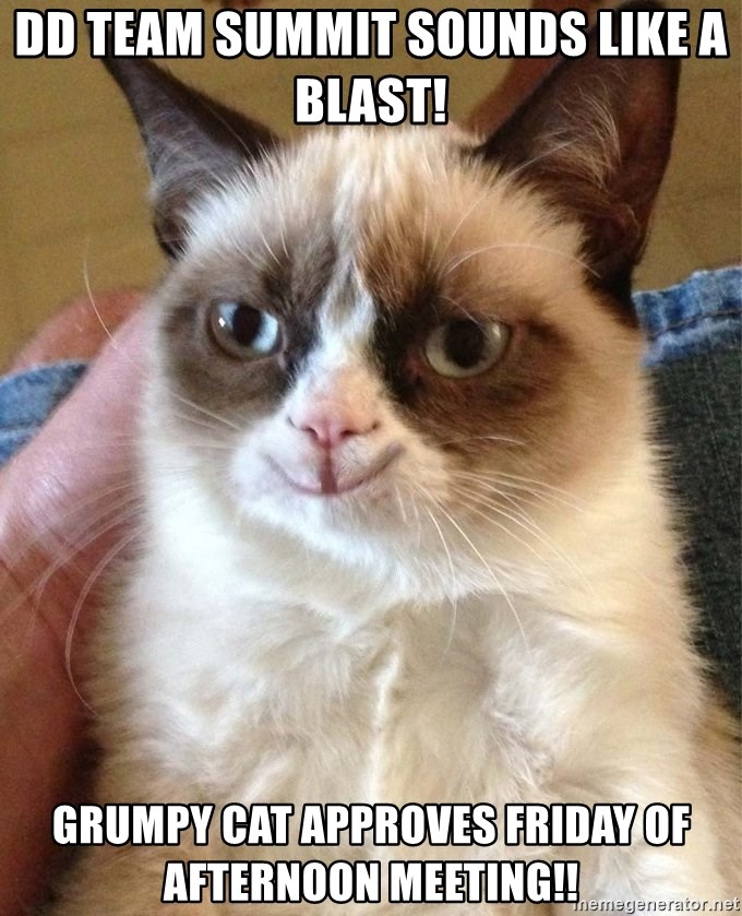 Grumpy Cat Happy Version - DD team summit sounds like a Blast!  Grumpy cat approves Friday of afternoon meeting!!