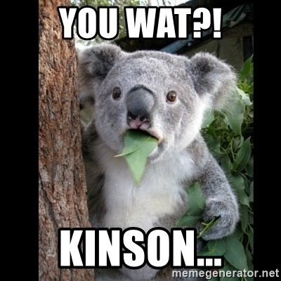 Koala can't believe it - YOU WAT?! KINSON...