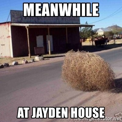 Tumbleweed - meanwhile  at jayden house
