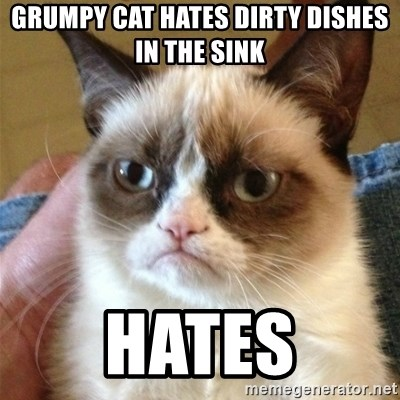 Grumpy Cat  - GRUMPY CAT HATES DIRTY DISHES IN THE SINK HATES