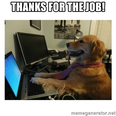 No Computer Idea Dog - Thanks for the job!