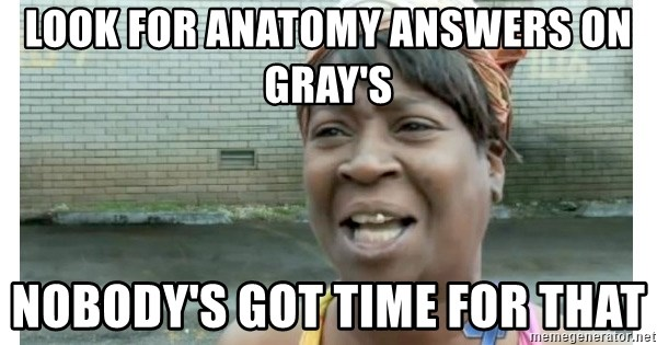 Xbox one aint nobody got time for that shit. - look for anatomy answers on Gray's Nobody's got time for that