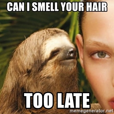 Whisper Sloth - can I smell your hair  too late
