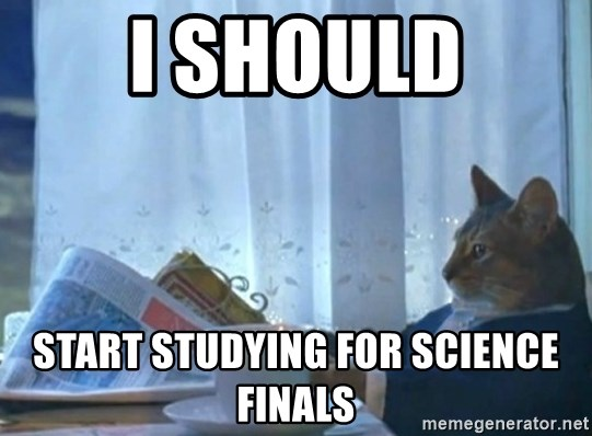 newspaper cat realization - I should Start studying for science finals