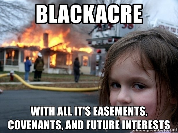 Disaster Girl - BLACKACRE with all it's easements, covenants, and future interests