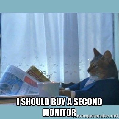 rich cat  -  I should buy a second monitor