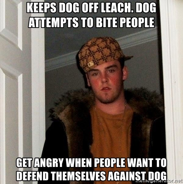 Scumbag Steve - keeps dog off leach. dog attempts to bite people get angry when people want to defend themselves against dog