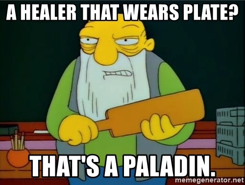 Thats a paddlin - A healer that wears plate? That's a Paladin.